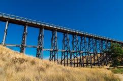 Nimmons bro nära Ballarat, Australien royaltyfria bilder