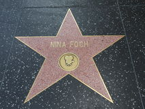 Nina Foch-ster in hollywood Royalty-vrije Stock Afbeelding
