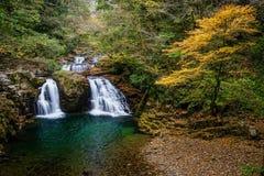 Ninai nedgång, Akame 48 vattenfall Royaltyfri Fotografi