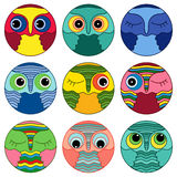 Nine amusing owl faces in a circle Stock Images