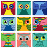 Nine amusing owl faces in square shapes Stock Photo