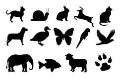 Nine animals black Royalty Free Stock Photography