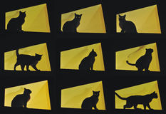Nine cat poses-black cat on yellow background. Black cat in yellow background in 9 frames in various poses indicating curiousity Royalty Free Stock Photo