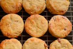 Nine cheese scones cooling on rack Stock Images