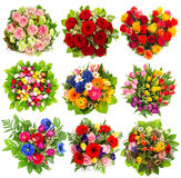 Nine colorful flowers bouquet on white Stock Image