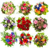 Nine colorful flowers bouquet on white Stock Photos