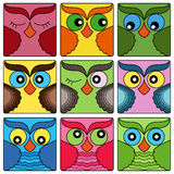 Nine cute owl faces in square shapes Royalty Free Stock Photography