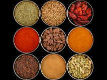 Nine different spices. An assortment of different spices for cooking Royalty Free Stock Image