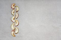 Nine dried apple slices on paper stock photo