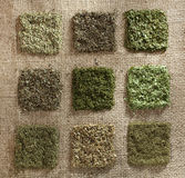 Nine dried herb piles on jute hessian backdrop Stock Image
