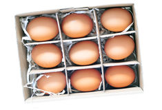 Nine_eggs_box Royalty Free Stock Image