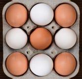 Nine Eggs in a Cardboard Carton Stock Image