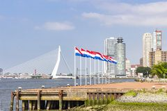 Nine flagpoles with the Dutch flag on the head of the peninsula of Katendrecht with in the background the Erasmus bridge in Rotter. Dam stock images