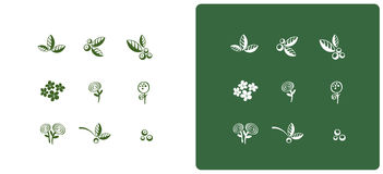 Nine floral silhouette parts. On white and dark green Royalty Free Stock Images
