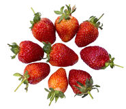 Nine of Fresh strawberry Royalty Free Stock Photography