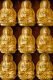 Nine Golden Buddha. On Wood Wall stock image