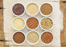 Nine healthy, gluten free grains Royalty Free Stock Images