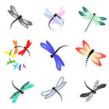 Set of images of dragonflies Stock Photo