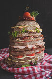 Nine layers sandwich Royalty Free Stock Images