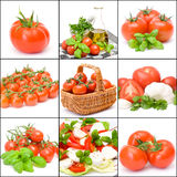 Nine pictures of tomatoes Royalty Free Stock Photography