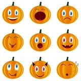 Nine pumpkins Stock Images