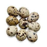 Nine quail eggs on a white isolated background. Close-up.Top view. royalty free stock photos