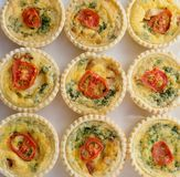 Nine Small Individual Quiche. Nine small individual quiche each topped with a slice of tomato on a white plate stock photography