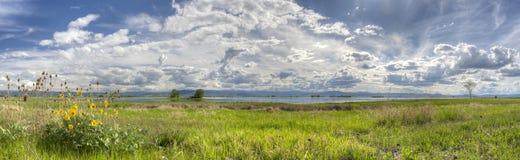 Ninepipes obywatela rezerwat dzikiej przyrody obrazy stock