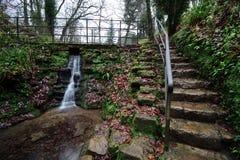 Ninesprings park w Yeovil fotografia stock