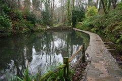 Ninesprings park w Yeovil zdjęcia royalty free