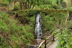 Ninesprings park w Yeovil w Somerset Obraz Stock
