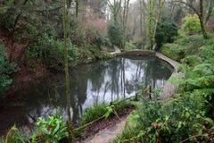 Ninesprings park w Yeovil obraz stock