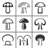 Nineteen mushrooms collection isolated on white background Royalty Free Stock Photos