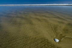 Ninety Mile beach, New Zealand Royalty Free Stock Image