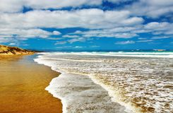 Ninety praias da milha, Nova Zelândia Fotos de Stock Royalty Free