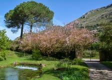 Ninfa庭院,风景庭院在奇斯泰尔纳迪拉蒂纳疆土,拉提纳省的,中央意大利 免版税库存照片