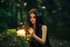 ninfa del bosque con el pelo largo fotos de archivo
