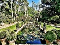 Ninfea garden. In Landriana Gardens Stock Photography