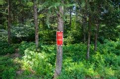 NINGÚN fuego firma adentro el bosque Foto de archivo
