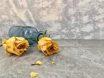 Ningún amor Las rosas amarillas se secaron y cayeron en una botella de cristal azul, foto de archivo libre de regalías