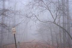 Ningún estacionamiento firma adentro el bosque       Imagen de archivo