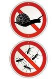 Ningunas muestras del jardín de las hormigas o de los caracoles ilustración del vector