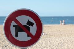 Ningunos perros Imagen de archivo