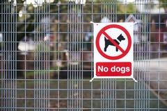 Ningunos perros permitieron la muestra en la entrada de la escuela imagen de archivo libre de regalías
