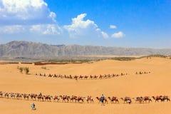 Ningxia landskap fotografering för bildbyråer