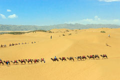 Ningxia scenery Royalty Free Stock Images