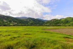 Ninh Thuan, Вьетнам - Otc 2016 - сельская местность Стоковое фото RF