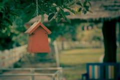 Ninho colorido do pássaro Fotos de Stock