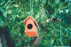 Ninho colorido do pássaro Fotos de Stock Royalty Free