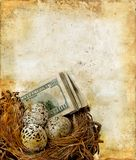 Ninho com dinheiro em um fundo de Grunge Imagem de Stock Royalty Free